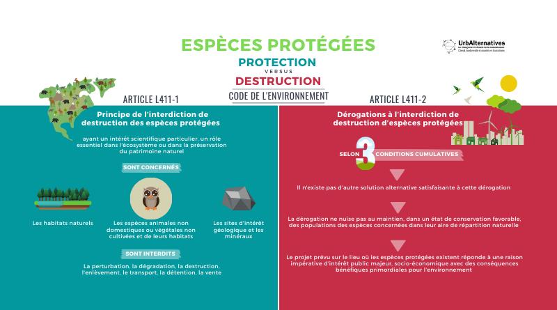 Espèces protégées entre protection et dérogation