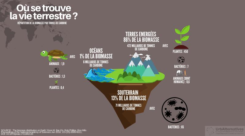 Où se trouve la vie terrestre ?