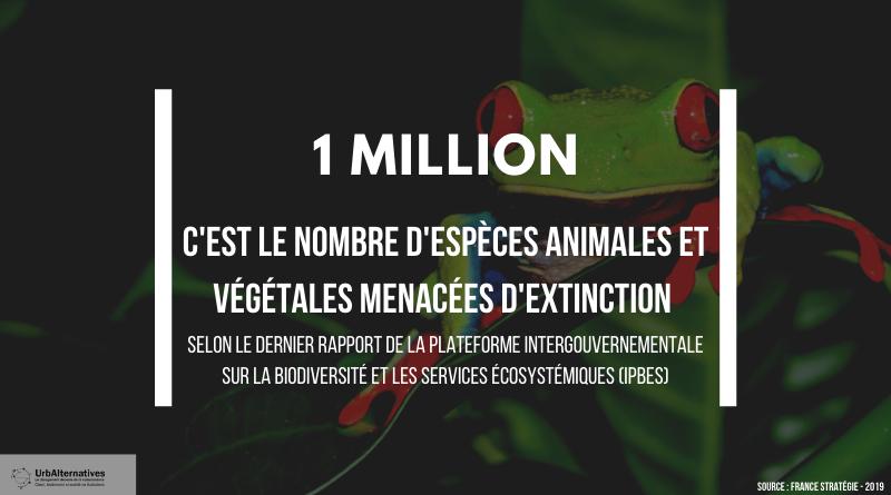 1 million d'espèces animales et végétales menacées d'extinction