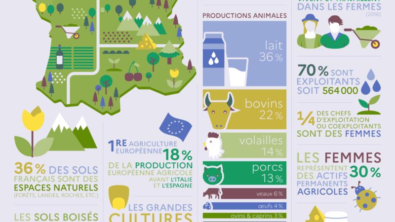 Le système agricole français : les chiffres [Ministère de l'Agriculture et de l'Alimentation]