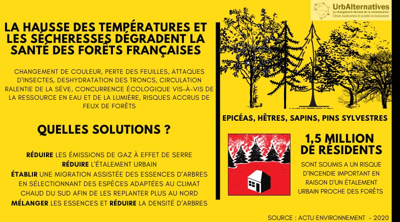 Températures, sécheresses et forêts