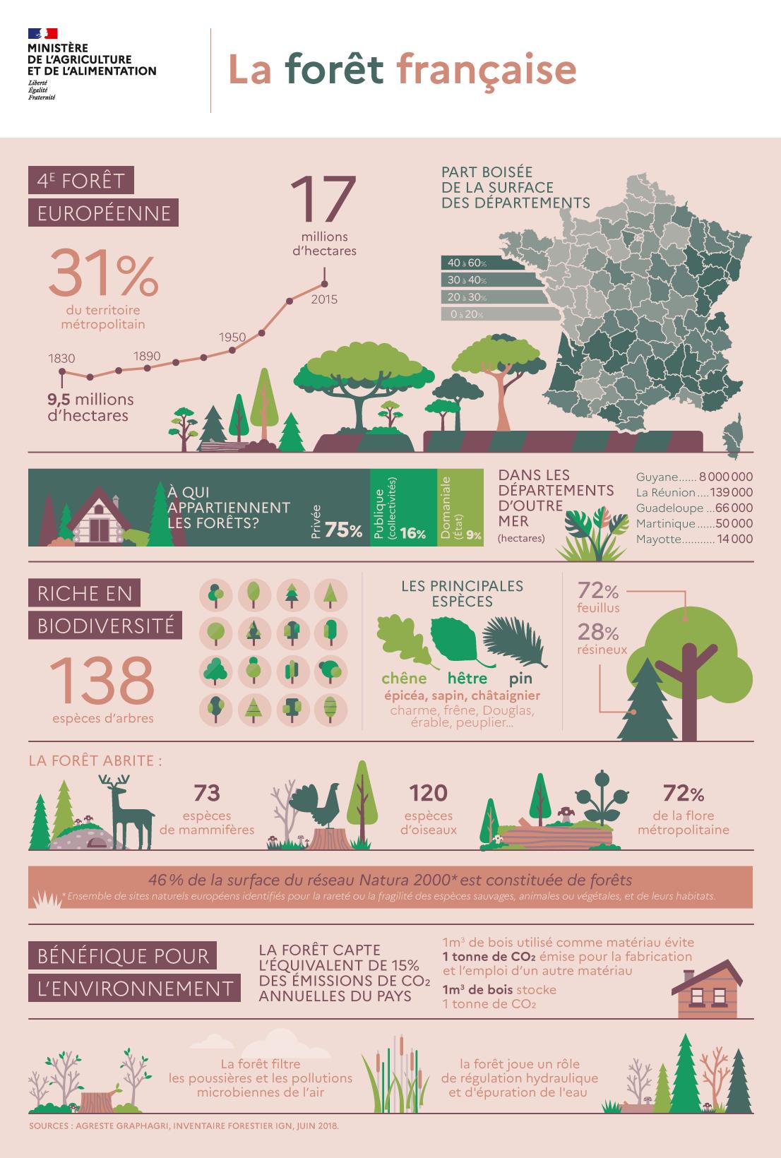 Forêts françaises : les chiffres [Ministère de l'Agriculture et de l'Alimentation]
