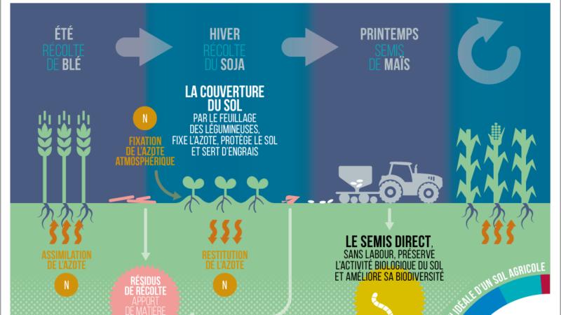 Agriculture de conservation [Ministère de l'Agriculture et de l'Alimentation]