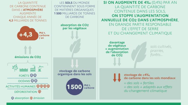 La séquestration du carbone [Ministère de l'Agriculture et de l'Alimentation]